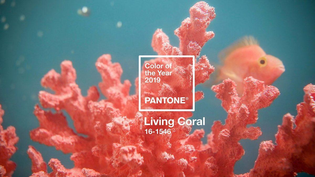 living coral couleur de l 39 ann e 2019 p le eco conception. Black Bedroom Furniture Sets. Home Design Ideas